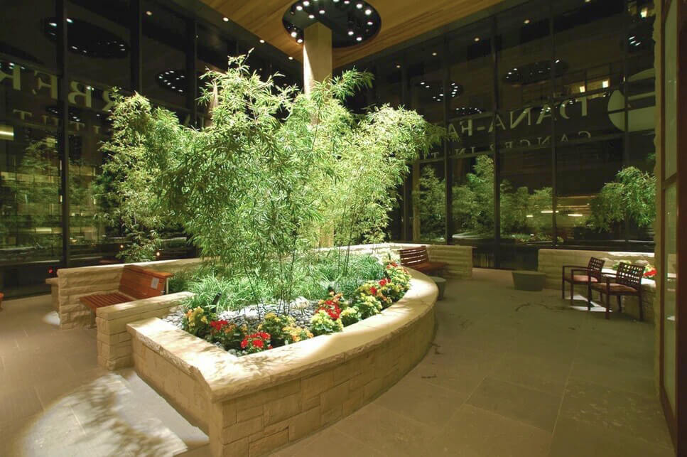 Dana Farber Indoor Greenscape Display